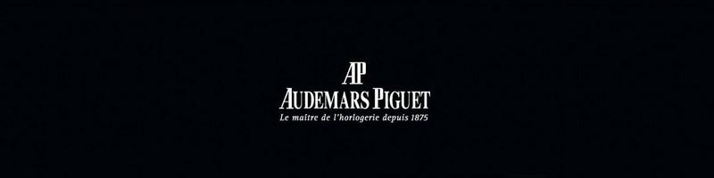 http://antiraiden.free.fr/AP2013/0.jpg